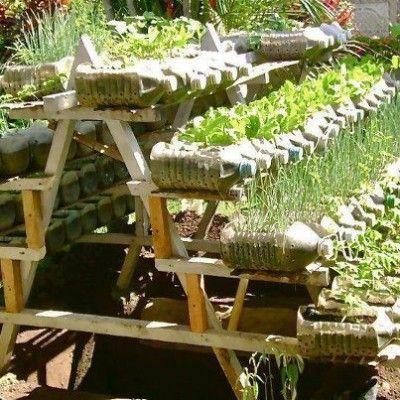 Plastové fľaše v záhrade