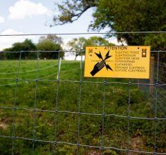 Elektrické ploty, ohradenie a obory