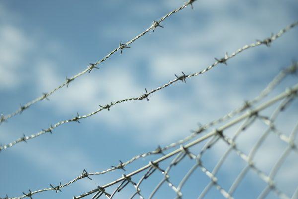 ostnaný drôtený plot