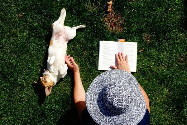 Tráva a psík na záhrade