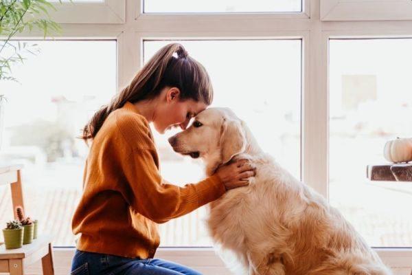 Pes chovateľstvo a starostlivosť s výživou