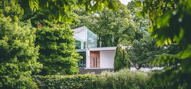 živý plot a záhrada