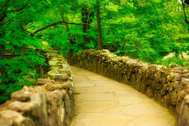 plochý kameň a kamenné tabule v chodníku v záhrade
