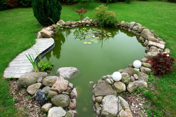 záhradné jazierko - prírodné jazierko v záhrade s kameňom